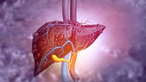 St. Mary's hospital develops 3D-printed implants to treat acute liver failure